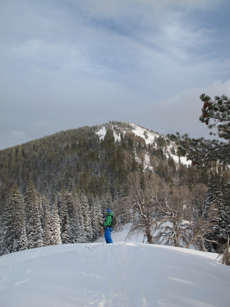 A backcountry skier looks up at 10,420 along it's West Ridge