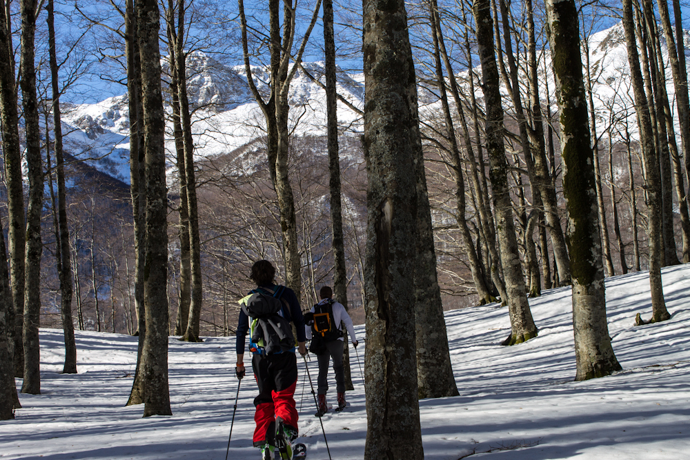A walk through the woods and down into Lazio, Abruzzo Lazio & Molise National Park
