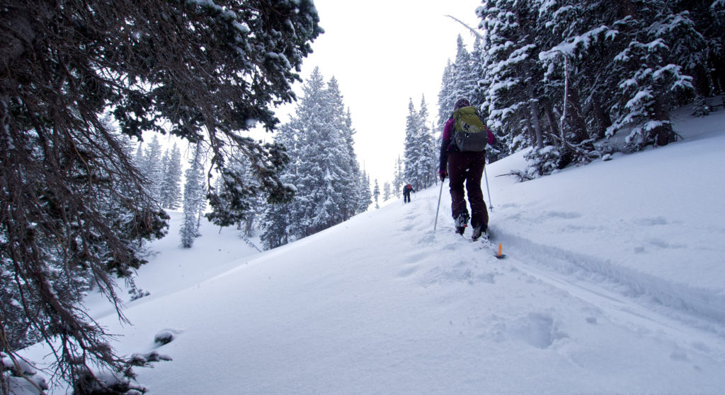 Tara McCutcheon in Days Fork, Wasatch Range, UT
