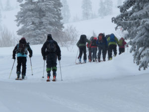 A small party heading into the Wasatch backcountry.