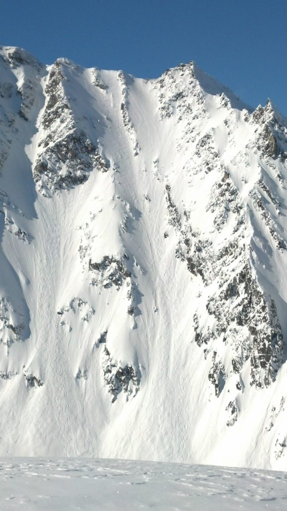 Contest Line on Mt. Billy Mitchell.