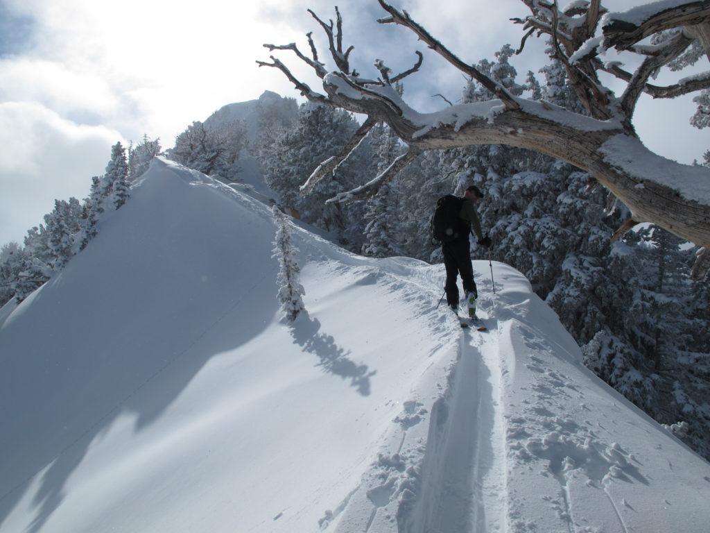 Courtney Phillips on the steep and narrow Mt. Raymond ridgeline